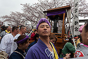 Festival supporters prepare to carry mikoshi or portable shrine with large phallus on them during the Kanamara Matsuri, (Festival of the Steel Phallus). Kawasaki Daishi, Kanagawa, Japan. Sunday April 3rd 2016. The famous Kawasaki Penis Festival started in 1977 as a small festival to celebrate an old legend about the defeat of a penis eating demon. Today the festival is a huge draw for Japanese and foreign tourists and raises money for HIV and AIDS research.