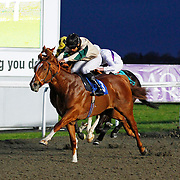 Kid Suitor and Sean Levey winning the 8.00 race