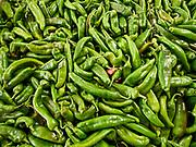 "U.S.A., New Mexico. Fresh ""Big Jim"" green chile."
