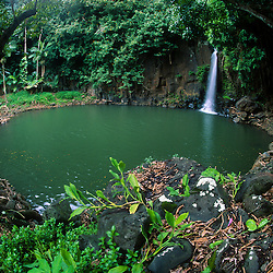 Lawai Waterfall and Pond (Fisheye), National Tropical Botanical Garden, Kauai, Hawaii, US