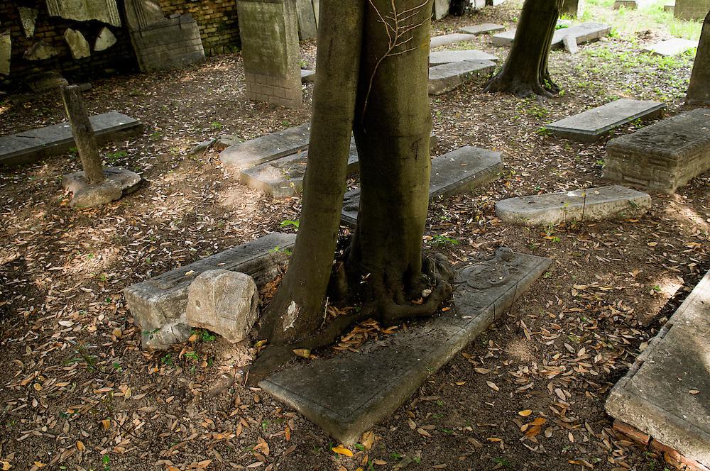 """Italie, Venetie, 20080601..De oude joodse begraafplaats op het eiland Lido..In de loop van de tijd is door de overmatige groei van planten en bomen en het daaropvolgende verval heeft het kerkhof een romantisch gevoel gegeven..De Republiek Venetie gaf de joden de mogelijkheid tot het aanleggen van een eigen kerkhof  in 1386. Hiervoor kregen zij een niet bebouwd, stuk grond in Sint-Nicolaas van Lido, waarvan het eigendom echter werdopgeeist door het klooster van de Lido. .De begraafplaats, met ingang van 1389, werd gebruikt zonder onderbrekingen en later zijn top bereikte bij de uitbreiding van 1641. .In 1938 (afkondiging van de Italiaanse rassenwetten) werd de begraafplaats definitief verlaten..In 1999 is begonnen met het herstel: veel gedenktekens zijn gered en geinventariseerd, meer dan 1000 kunnen worden gedateerd tussen 1550 en het begin van de 18e eeuw...Italy, Venice..The acient Jewish cemetery on the island Lido..With the passing of time, the overgrowth of foliage and vegetation and its subsequent decay lent a romantic air to the cemetery, one that would inspire poets. .The Republic of Venice gave the Jews the possibility to create a cemetery of their own in 1386, giving them a non cultivated, piece of land in St. Nicholas of Lido, whose property was however claimed by the monastery of Lido..The cemetery, starting from 1389, was used with no interruptions and later made bigger reaching its top expansion in 1641..In 1938 (promulgation of Italian Racial laws) the cemetery was definitely abandoned..In 1999 restoration has begun: many memorials have been saved and classified more than 1000 of them which can be dated between 1550 and the early 18th century...Emerson College, Summer Course.Venezia, Venice Bet ha-Khaiim, """"house of the living"""" is, in Hebrew, the euphemism which designates the cemetery.    ."""