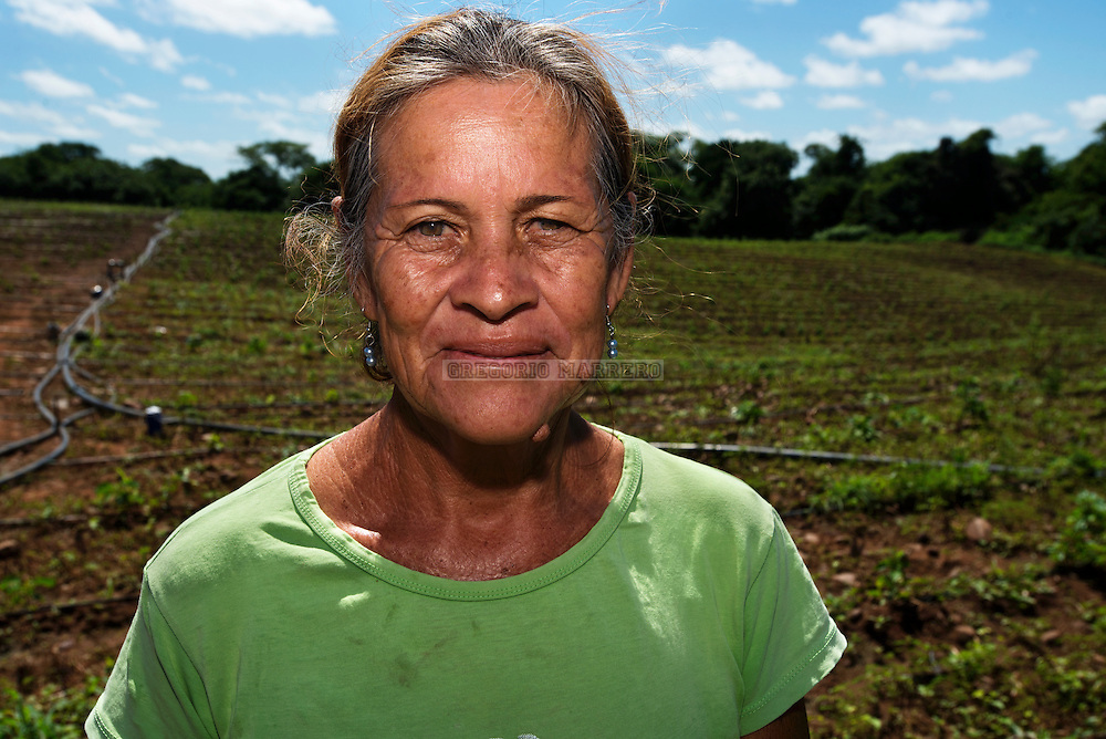 """Ana Coronel funded through the """"Bankomunales"""" system buy seeds and fertilizer to plant Peppers. The central idea behind microfinance is to bring quality financial services to sectors traditionally not served by formal services. The father of this idea is the """"Grameen Bank"""" Nobel Peace Prize 2007, Muhamead Yunnus. Los Negros, 09/07/13. (Gregorio Marrero / Orinoquiaphoto)"""