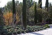 Mediterranean Garden 788