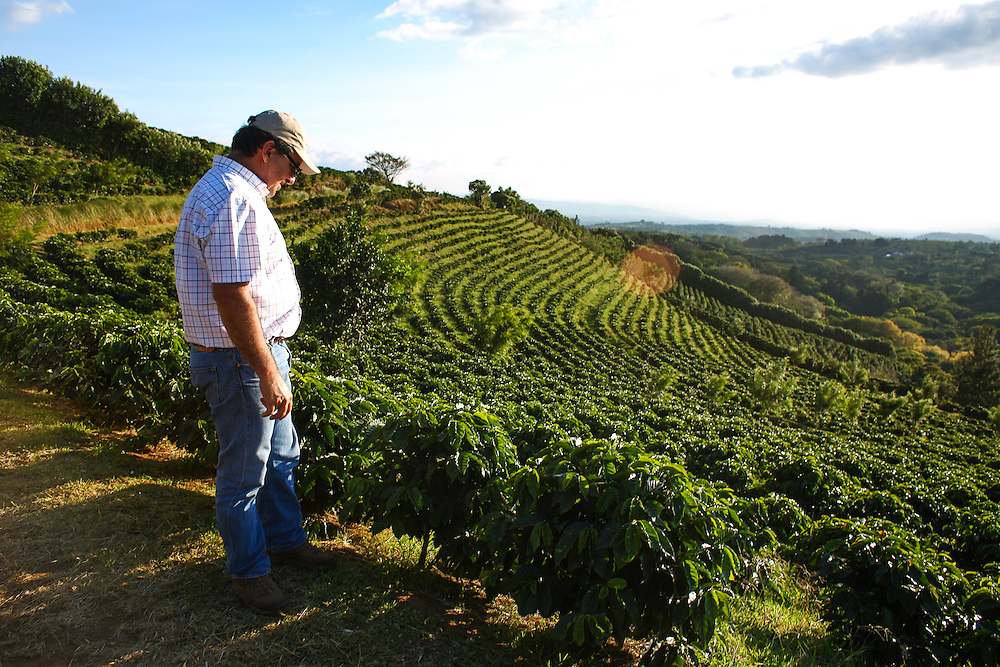Hacienda Alsacia farm manager Victor Trejos looks over the farm during the 2016 Starbucks Origin Experience for Partners. Photographed in January 2016. (Joshua Trujillo, Starbucks)