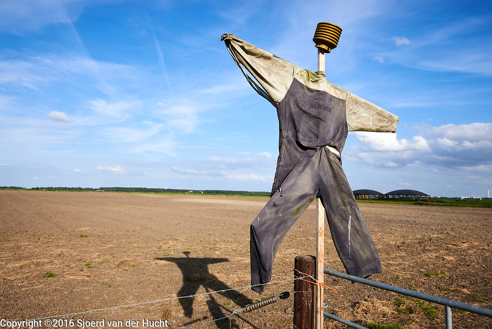 Vogelverschrikker op een veld in de polder - Scarecrow in a field in the polder of the Netherlands
