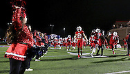 Bishop Dunne players take the field before the TAPPS Division I state championship game on Saturday, Dec. 3, 2016 at Panther Stadium in Hewitt, Texas. Bishop Lynch High School won 21-17. (Photo by Kevin Bartram)