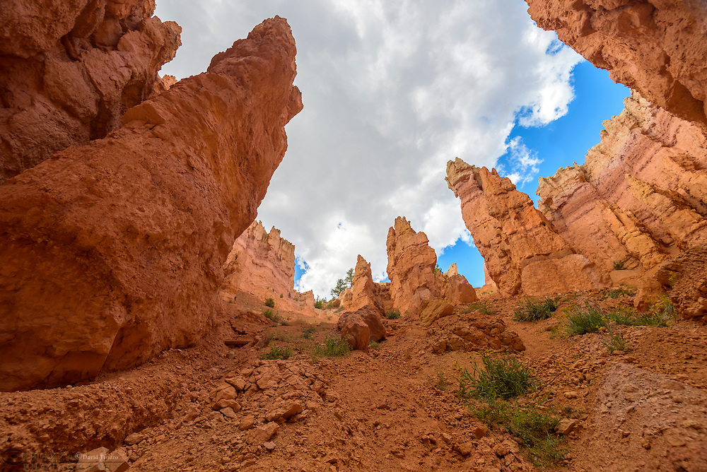 Scenic Views, Bryce Canyon National Park, wall Street, located Utah, in the Southwestern United States.