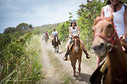 St. Kitts<br /> photo by David Stubbs / Fisher Creative