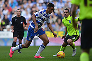 Reading's Nick Blackman on the attack during the Sky Bet Championship match between Reading and Brighton and Hove Albion at the Madejski Stadium, Reading, England on 31 October 2015. Photo by Mark Davies.