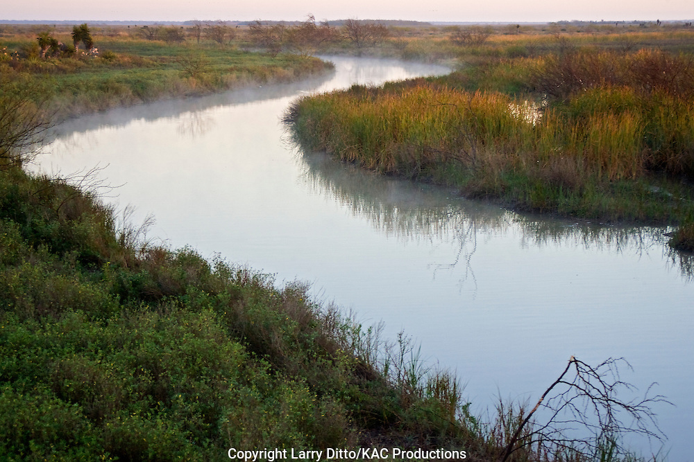 Cayo Atascosa, Laguna Atascosa National Wildlife Refuge, south Texas, winter, with steam rising, sunrise