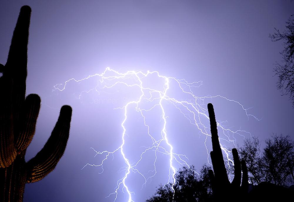 July. 11, 2012; Scottsdale, AZ, USA; Lightning strikes in the desert of Arizona. Mandatory Credit: Jennifer Stewart