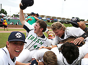 Members of the Springfield Catholic Fighting Irish celebrate after winning Wednesday's Class 3 championship game over the Christian Eagles during the 2014 MSHSAA Baseball Championships at T.R. Hughes Stadium on June 4, 2014 in O'Fallon, Mo. (David Welker/For the News-Leader)