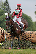 YOGI BEAR VIII ridden by Paul Tapner (Australia) at Bramham International Horse Trials 2016 at  at Bramham Park, Bramham, United Kingdom on 11 June 2016. Photo by Mark P Doherty.
