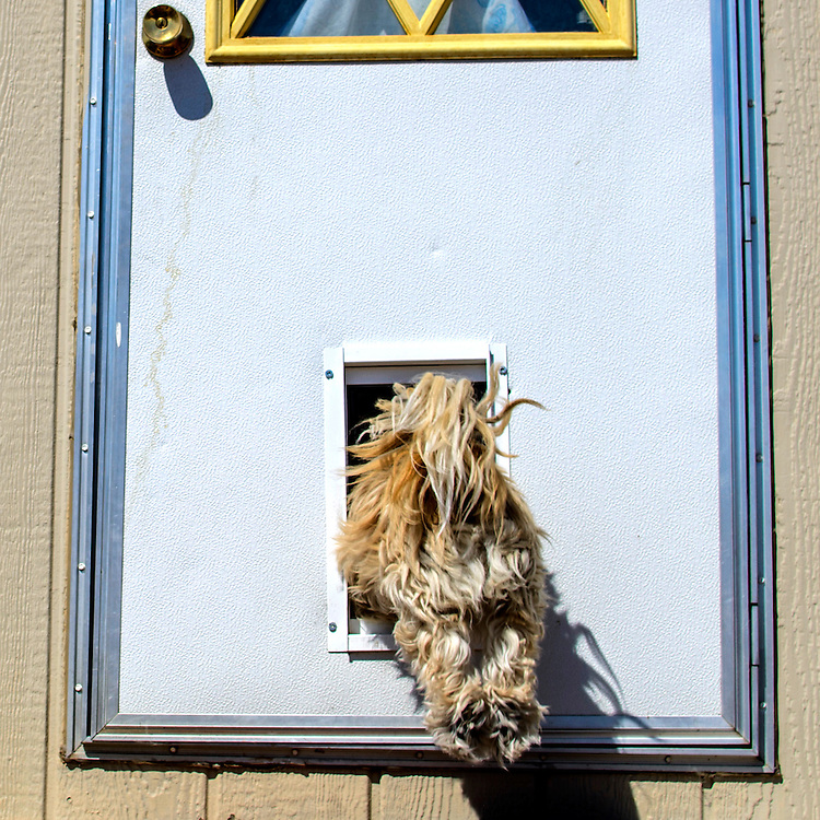 Photo by Matt Roth<br />
