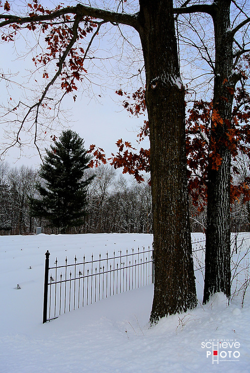 Sinsinawa Mound is a spiritual retreat center located on 450 acres of lush woodlands in the Southwest corner of Wisconsin.