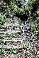 Annapurna Hiking trail on the way to Tadapani, Nepal.