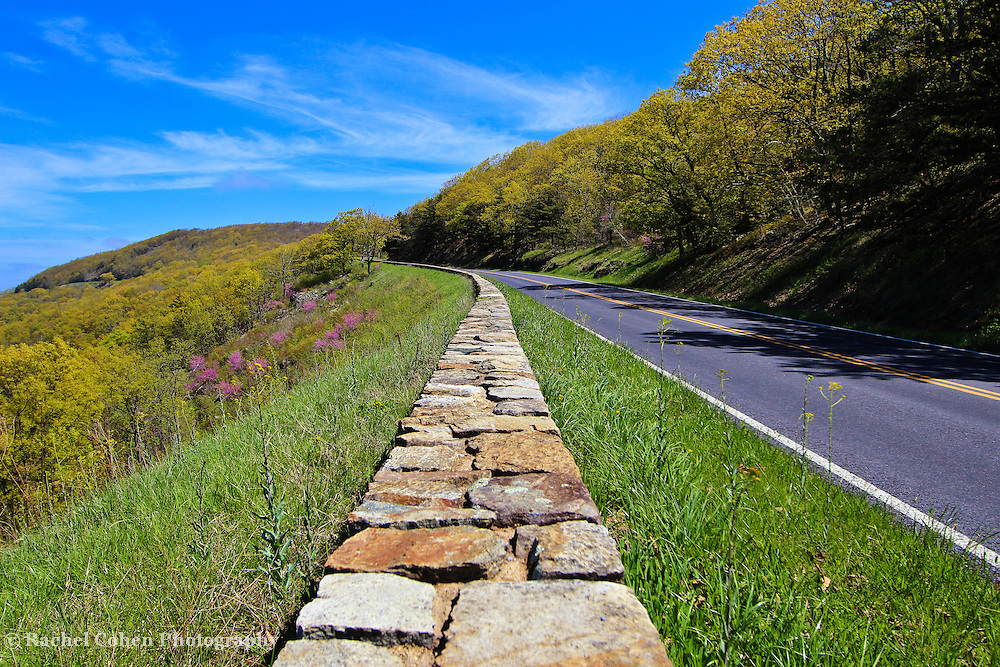 &quot;Skyline Drive in Spring&quot;<br />