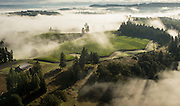 Aerial view over Soter Vineyards, Yamhill-Carlton AVA, Willamette Valley, Oregon