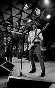 Nick Lowe and Dave Edmonds in concert 1980