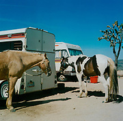 Two horses standing next to a couple of caravans in the desert USA