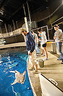 "Twelve natural resource ecology and management students at Oklahoma State University got a behind the scenes education at the Oklahoma Aquarium in Jenks during the week long ""Aquatic Biology and Management"" course."