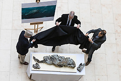 The fossilised skeleton of a Jurassic sea creature from the Ichthyosaurs family found on Skye in 1966 has been unveiled at the National Museum of Scotland by scientists for the first time. Named the Storr Lochs Monster, it is the most complete skeleton of a sea-living reptile from the dinosaur age ever to be found in Scotland and has been extracted from the rock that encased it for millions of years.<br /> <br /> A partnership between the University of Edinburgh, National Museums of Scotland and every company SSE has enabled the fossil to be extracted from the rock that encased it for millions of years.<br /> <br /> Pictured: Dr Nick Fraser (National Museums of Scotland), Allan Gillies (son of Norris Gillies who found the fossil in 1966), Dr Steven Brusatte (University of Edinburgh) unveiling the fossil