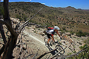 """Cary Smith, 43,  of Littleton leads a group of riders (not pictured) down some singletrack as they make their way through """"Moore Fun"""" during the 11th Annual Fruita Fat Tire Festival on Friday April 28, 2006. The Festival went back to its roots this year featuring loosely organized rides many hosted by local riders, expo tents, music and plenty of riding on the many trails that have made Fruita famous world-wide. The event lasted all weekend. Smith said he has been to all 11 Fruita Fat Tire Festivals..(MARC PISCOTTY/ © 2006)"""