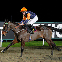 Coup De Grace and Shane Kelly winning the 6.00 race