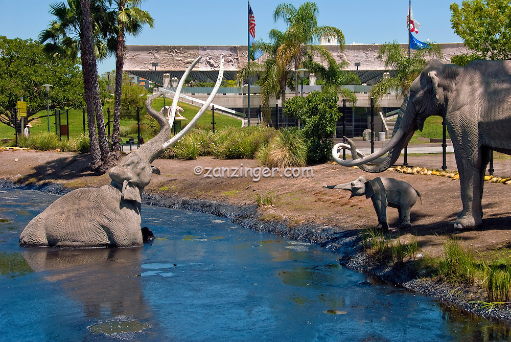 The La Brea Tar Pits and Hancock Park