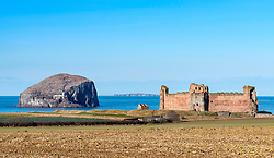 View of Tantallon Castle and Bass Rock in East Lothian, Scotland, United Kingdom