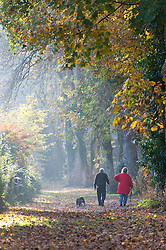 © Licensed to London News Pictures. 31/10/2016. Builth Wells, Powys, Wales, UK. An elderly couple walk their dogs by the Irfon river in Builth Wells, Powys, UK. Autumn arrives late in Powys, Wales, UK. Photo credit: Graham M. Lawrence/LNP