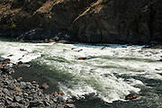Surviving Wild Sheep Rapid, Snake River, Hell's Canyon, Oregon.