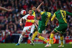 Mesut Ozil of Arsenal and Russell Martin of Norwich City high kick - Mandatory byline: Jason Brown/JMP - 07966386802 - 30/04/2016 - FOOTBALL - Emirates Stadium - London, England - Arsenal v Norwich City - Barclays Premier League