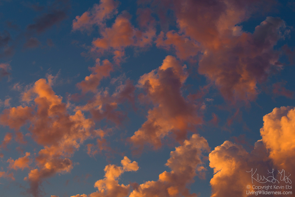 "A series of cumulus clouds develop and grow as the sun sets over Snohomish County, Washington. Cumulus means ""heap"" or ""pile"" in Latin, and the clouds typically form where warm air rises and reaches a level of cold air where the moisure in the air condenses."