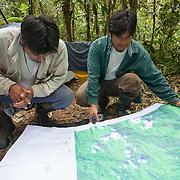 Conservation Concession of the Queros Wachiperi Native Community near Pilcopata, Peru. The Haramba Queros Wachiperi Conservation Concession is part of the Los Amigos - Tambopata Conservation Corridor.