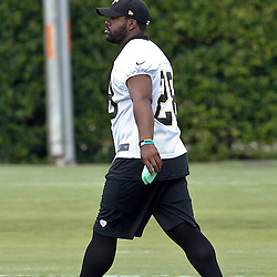 June 5, 2012; Metairie, LA, USA; New Orleans Saints running back Mark Ingram (28) during a minicamp session at the team's practice facility. Mandatory Credit: Derick E. Hingle-US PRESSWIRE
