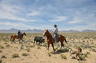 Cowboys near Warm Springs,Nevada,USA<br /> Model released 0427, o428