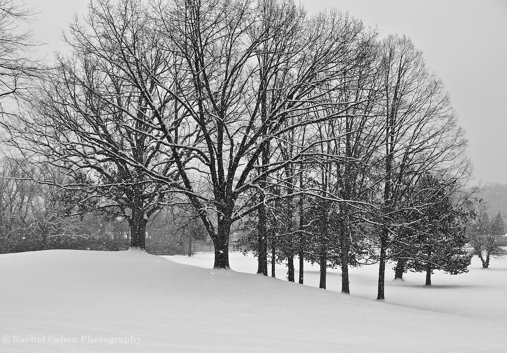Winter in Michigan!<br />