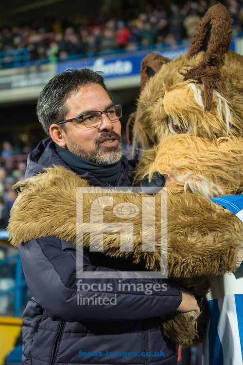 Huddersfield Town manager David Wagner is embraced by the club mascot prior to the Sky Bet Championship match at the John Smiths Stadium, Huddersfield<br /> Picture by Matt Wilkinson/Focus Images Ltd 07814 960751<br /> 28/11/2016