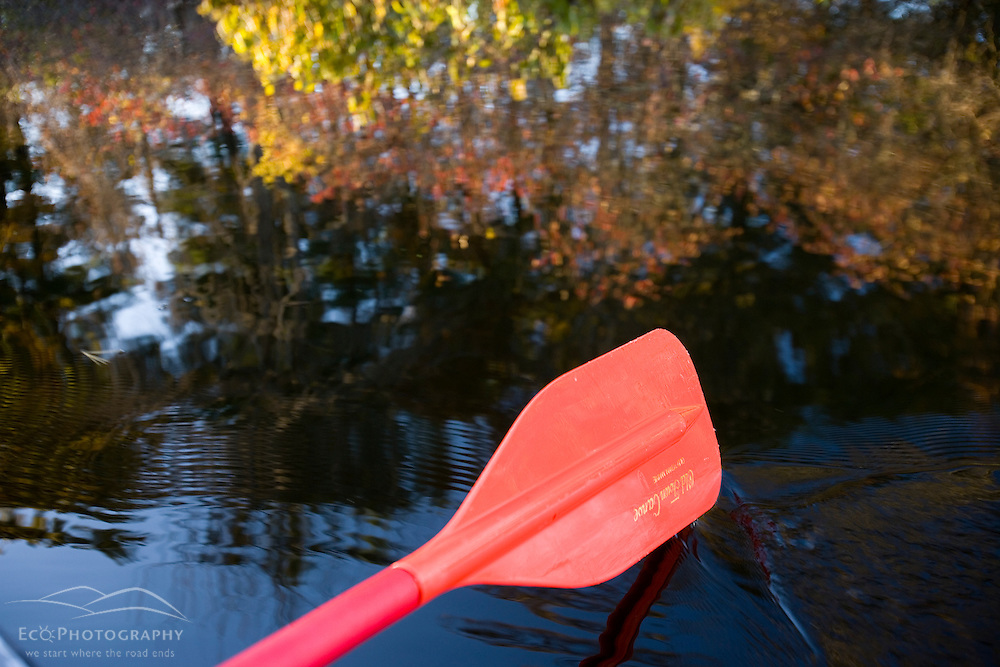 Paddling in the Ipswich River in Ipswich Massachusetts USA