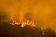Brea Canyon Firestorm, Southern California