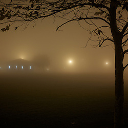 Trees and a small building in a suburban park on a foggy night. Irvine, CA.