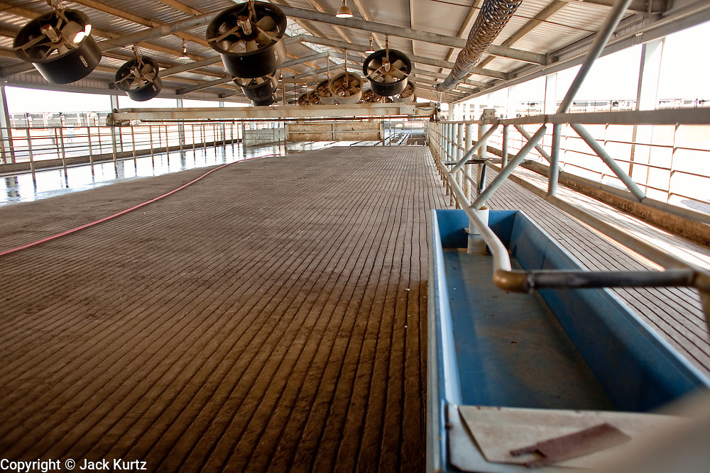 31 JULY 2009 --  BUCKEYE, AZ: Cows used to wait in this pen before being milked on the former Pylman Dairy Farm in Buckeye. The auction was handled by Overland Stockyards from Hanford, CA. The Arizona dairy industry is struggling to survive the worst milk economy some have ever seen. Due to the global recession, overseas demand for Arizona dairy products has plummeted, forcing prices down while production costs have stayed stable or gone up. For every $1 dairymen earn from milk sales, it cost them $1.50 to produce the milk. Photo by Jack Kurtz