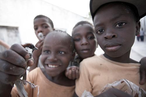 travel, mozambique