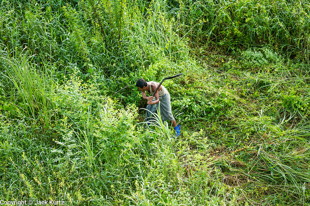 06 JUNE 2014 - IRRAWADDY DELTA,  AYEYARWADY REGION, MYANMAR: A farmer clears land on his farm near the Irrawaddy River in the Irrawaddy Delta (or Ayeyarwady Delta) in Myanmar. The region is Myanmar's largest rice producer, so its infrastructure of road transportation has been greatly developed during the 1990s and 2000s. Two thirds of the total arable land is under rice cultivation with a yield of about 2,000-2,500 kg per hectare. FIshing and aquaculture are also important economically. Because of the number of rivers and canals that crisscross the Delta, steamship service is widely available.   PHOTO BY JACK KURTZ