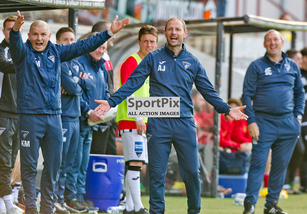 Dunfermline Athletic v Albion Rovers SPFL League One Season 2015/16 East End Park 03 October  2015<br /> Allan Johnston appeals a decision<br /> CRAIG BROWN | sportPix.org.uk
