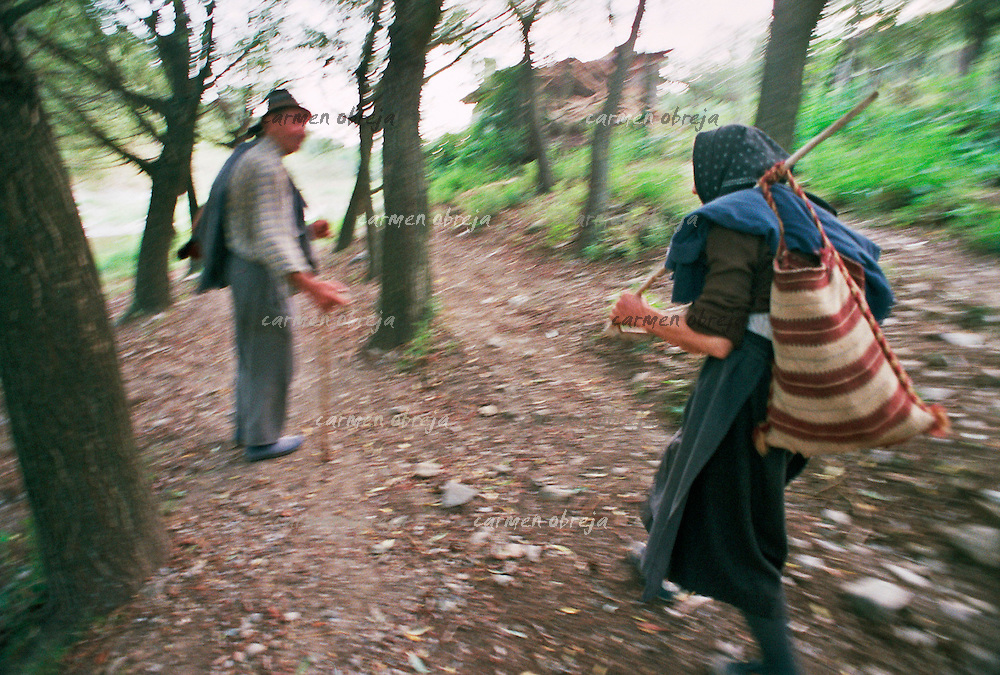 old family descend from their cottage in the mountains, in a village close to serbian border