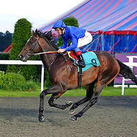 Famous Poet and Frankie Dettori winning the 8.20 race