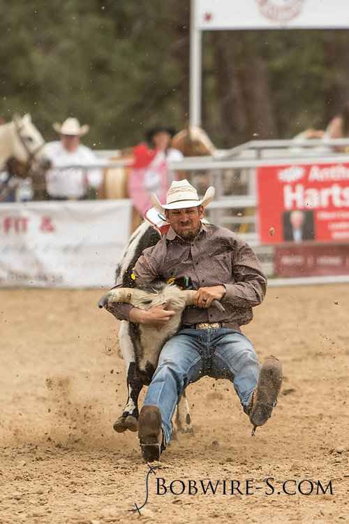 Chancey Winsor makes his steer wrestling run during the third performance of the Elizabeth Stampede on Sunday, June 3, 2018.