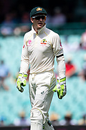 Australian player Tim Paine at the 4th Cricket Test Match between Australia and India at The Sydney Cricket Ground in Sydney, Australia on 03 January 2019.